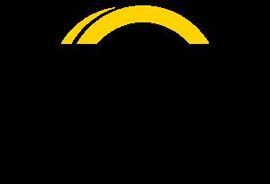 AA Vietnam